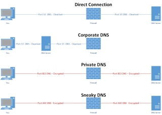 Sneaky DNS.png