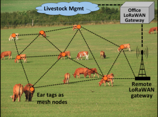cow-mesh-network-100682314-large.idge.png